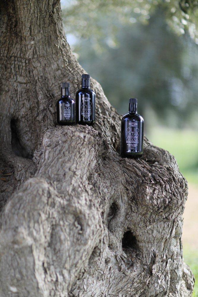 olio extra vergine cuturi con albero